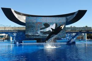 SeaWorldBelieveBlog
